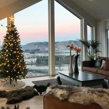 b9b01d3a966 Puede poner algunas mantas de pieles de animales en el sofá y colgar  docenas de pequeñas coronas navideñas en la pared. Ah